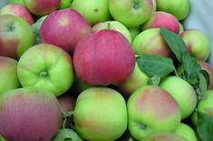 Main pic medium jab ka wczesne 2
