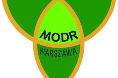 Main pic medium logo modr