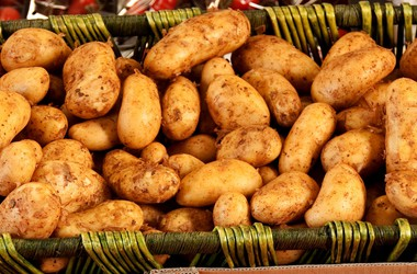 Main pic news m ode ziemniaki importowane