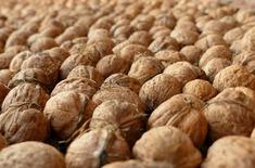 Main pic medium nuts 1564926 1920