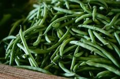 Main pic medium fasolka szparagowa zielona