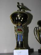 Awards 489d8a746c0b448cec48c10cee91d1f9